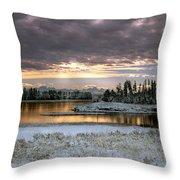 Harriman Winter Throw Pillow