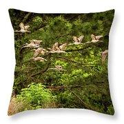 Harris Neck Ibis In Flight Throw Pillow
