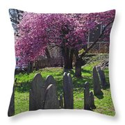 Harris Street Cemetery Cherry Blossom Tree Marblehead Ma 2 Throw Pillow
