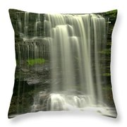 Harrison Wrights Falls Throw Pillow