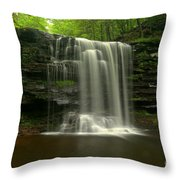 Harrison Wrights Forest Falls Throw Pillow