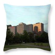 Hartford Skyline Panorama Throw Pillow