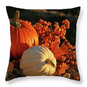 Harvest Colors Throw Pillow by Sandra Cunningham