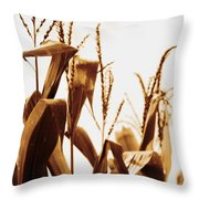 Harvest Corn Stalks - Gold Throw Pillow
