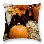 Harvest Throw Pillow