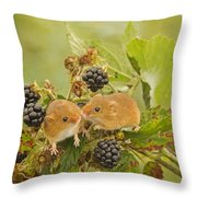 Harvest Mice On Blackberry Throw Pillow