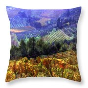 Harvest Time At The Vineyard Throw Pillow by Elaine Plesser