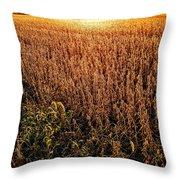 Harvest Twilight Throw Pillow