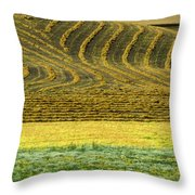 Harvested Fields Of The Palouse Throw Pillow