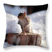 Has Anyone Seen My Nuts Throw Pillow