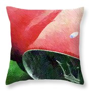 Hatched Maser Throw Pillow