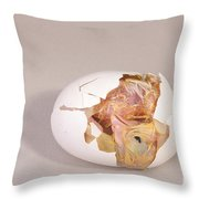 Hatching Chicken 11 Of 22 Throw Pillow