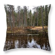 Haukkajoki 1 Throw Pillow
