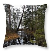 Haukkajoki Throw Pillow