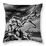 Haunting Beauty Throw Pillow