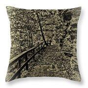 Havana Pathway In Sepia Throw Pillow by William Norton