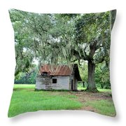 Havana Steers Throw Pillow by Jan Amiss Photography