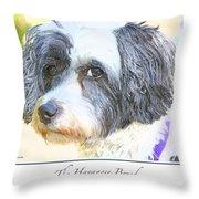 Havanese Dog Throw Pillow