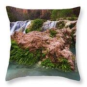 Havasu Creek Grand Canyon 14 Throw Pillow