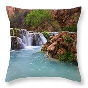 Havasu Creek Grand Canyon 15 Throw Pillow