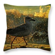 Have A Walk By Th Sea Throw Pillow