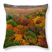 Havenwoods State Forest Throw Pillow