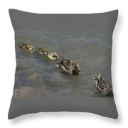 Having Your Duckies In A Row  Throw Pillow
