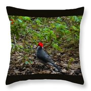 Hawaii Birds 5 Throw Pillow