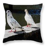 Hawaii Birds 9 Throw Pillow