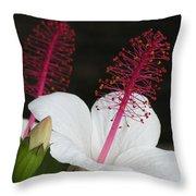 Hawaii Flower Throw Pillow