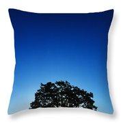 Hawaii Koa Tree Throw Pillow