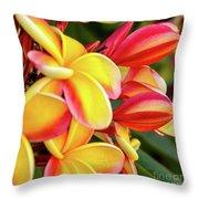 Hawaii Plumeria Flowers In Bloom Throw Pillow