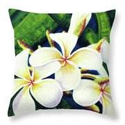 Hawaii Tropical Plumeria Flowers #160 Throw Pillow