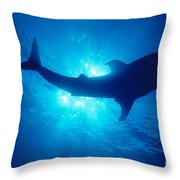 Hawaii, Whale Shark Throw Pillow