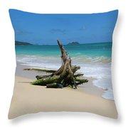 Hawaiian Beach Throw Pillow