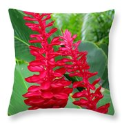 Hawaiian Beauty 2 Throw Pillow