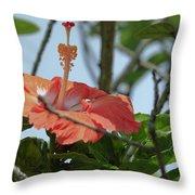 Hawaiian Beauty Throw Pillow