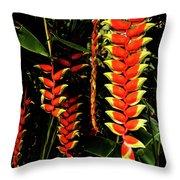 Hawaiian Heliconia Throw Pillow