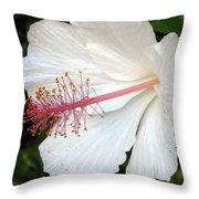 Hawaiian Hibiscus 2 Photograph Throw Pillow