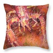 Hawaiian Lobster Throw Pillow