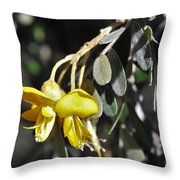 Hawaiian Mamane Throw Pillow