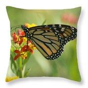 Hawaiian Monarch 1 Throw Pillow