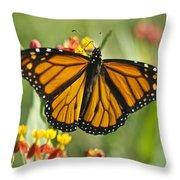 Hawaiian Monarch 3 Throw Pillow