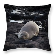 Hawaiian Monk Seal Throw Pillow