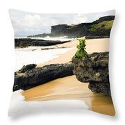 Hawaiian Offering On Beach Throw Pillow