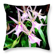 Hawaiian Orchid 31 Throw Pillow