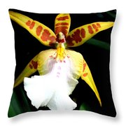 Hawaiian Orchid 32 Throw Pillow