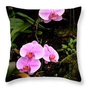 Hawaiian Orchids Throw Pillow