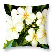 Hawaiian Plumeria #56 Throw Pillow