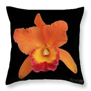 Potinara Hawaiian Thrill, Paradise Throw Pillow